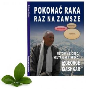 książka ash
